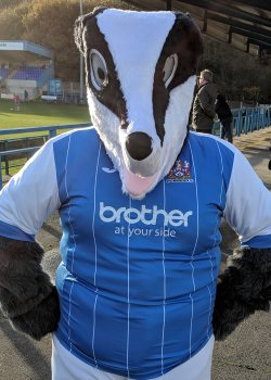 Bower Badger